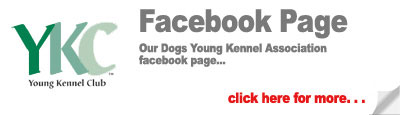 Young Kennel Club Association