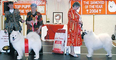 Novotel Nottingham Dog Show