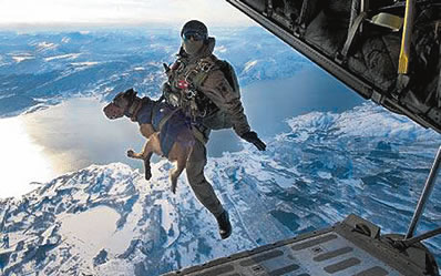 Special Forces Dogs