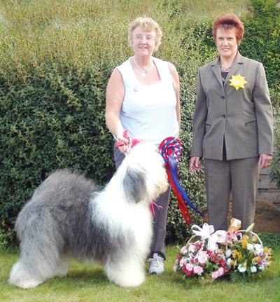 Our Dogs Newspaper - News, breeders, showdogs, dog breeds